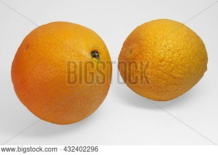 Pair Of Large And Ripe Oranges With Smooth And Wrinkled Peel