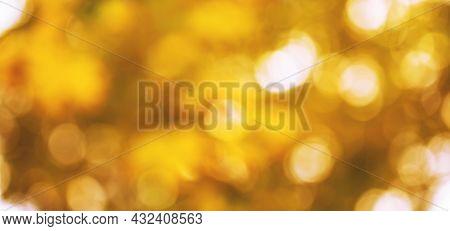 Blurred Defocused Autumn Nature Background With Orange, Yellow, Golden Sun Lights Natural Bokeh, Ban