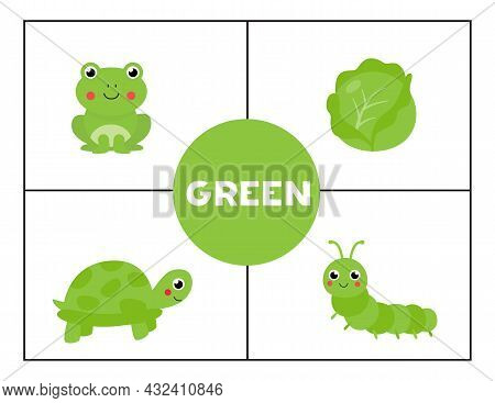 Basic Colors For Children. Flashcards For Learning Colors. Green Color.