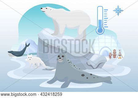 Northern Pole Cold Place Wild Animal Bear, Ocean Seal, Arctic Fox Beast, Alaska Citizen Flat Vector