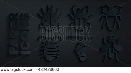 Set Butterfly Cocoon, Cockroach, Larva Insect, Insect, Stink Bug And Mite Icon. Vector
