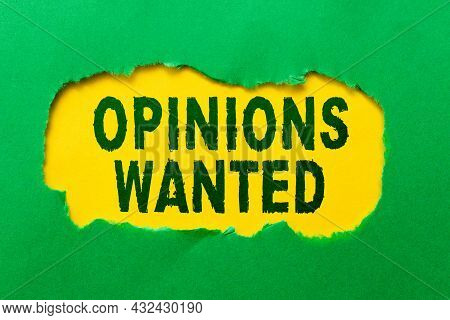 Conceptual Display Opinions Wanted. Internet Concept Judgment Or Advice By An Expert Wanted A Second