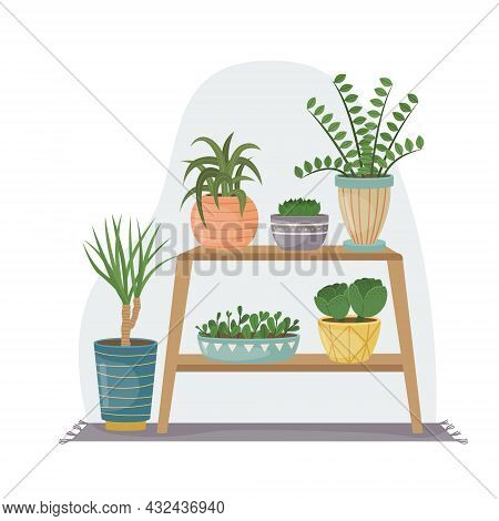 The Flat Illustration With House Pants In Pots. Planting. Decorative Plants In The Interior Of The H