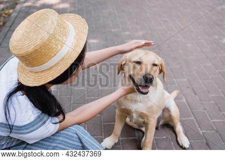 Brunette Woman In Straw Hat Cuddling Yellow Labrador In Park