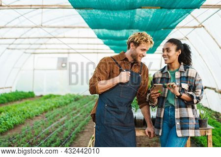Happy middle aged multiethnic couple of farmers working in a greenhouse together holding mobile phone