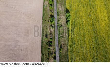 An Old Road Separates Two Farm Fields, Aerial View. Plowed Field And Rapeseed Field, Farmland.