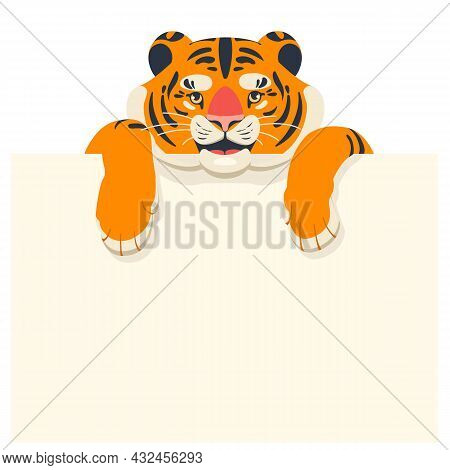 Cute Tiger Cub Holds An Empty Template For Text In Its Paws. Design For Headline, Card And Banner. V