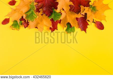 Frame From Fallen Autumn Maple Leaves On A Bright Yellow Background. Colorful Fall Foliage. Backdrop