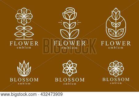 Beautiful Geometric Flower Logos Vector Linear Designs Set, Sacred Geometry Line Drawing Emblems Or
