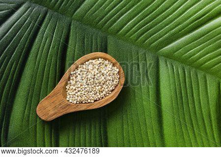 Organic White Quinoa Seeds In Spoon - Chenopodium Quinoa