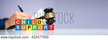 Paying Child Support After Divorce. Court Litigation