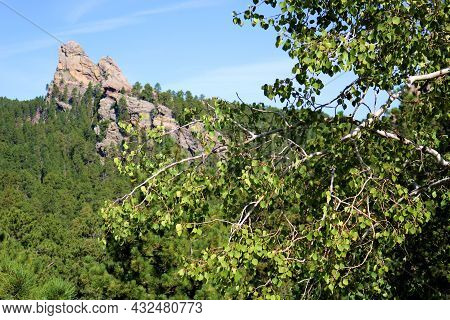 Lush Aspen Tree Overlooking A Mountain Ridge Covered With Pine Trees And Ancient Rock Formations Tak