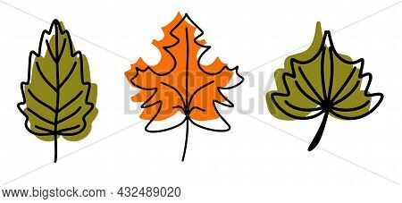 A Collection Of Fallen Autumn Leaves Of Different Shapes And Colors. Autumn Background, A Poster Wit