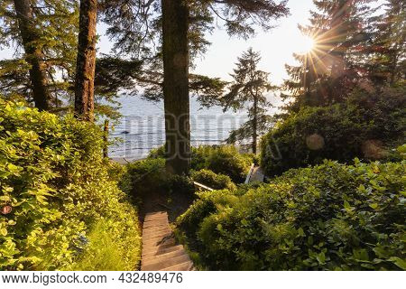 Hiking Path To Mystic Beach In The Vibrant Rainforest And Colorful Green Trees On Juan De Fuca Trail