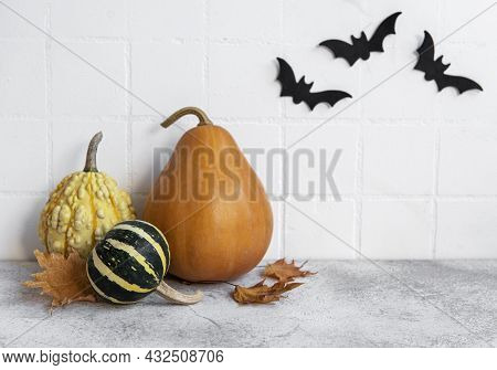 Halloween Pumpkins And Jack O Lantern Decor Against A White Wall With Bats.