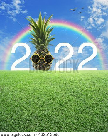Pineapple With Sunglasses And 2022 White Text On Green Grass Field Over Rainbow, Birds And Blue Sky
