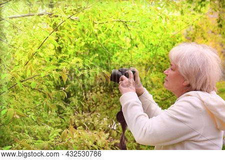 Senior Woman Shooting Photo By Digital Camera. Shooting Blooming Bird Cherry Tree. Concept Of Aged P
