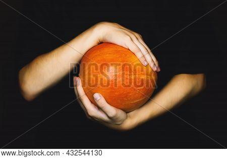 Women's Hands Hold An Orange Pumpkin For Halloween On A Dark Background. A Woman With A Pumpkin. Aut