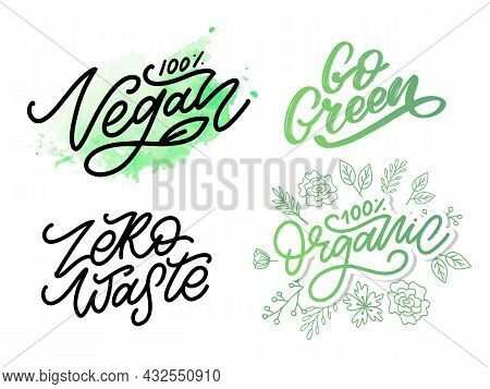 Vector Illustration, Food Design. Handwritten Lettering For Restaurant, Cafe Menu. Vector Elements F
