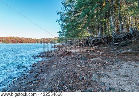 Shoreline Erosion With The Tree Roots Exposed At The Edge Of The Rocky Terrain With The Fall Colors