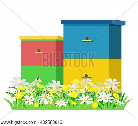 Apiary. Rural Farm Landscape With Bee Hive In A Summer Meadow. Blooming Meadow With Camomiles. Brand