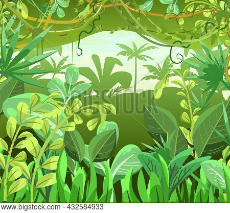 Thick Impassable Jungle Background. Plants Rainforest. Beautiful Green Landscape With Exotic Trees A