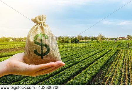 Dollar Money Bag On Farm Field. Lending And Subsidizing Farmers. Grants, Financial Support. Agribusi