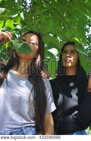 Low Angle View Of Two Beautiful South Asian Young Girls Posing Outside In Below Leafy Tree