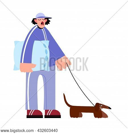 Early Morning Walk With A Pet, A Yawning Man With A Dachshund And A Bed Pillow, Color Vector Illustr