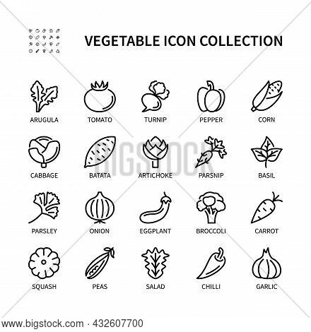Vegetables, Simple Set Of Vector Linear Icons. Isolated Collection Of Vegetables Icons. Vector Symbo