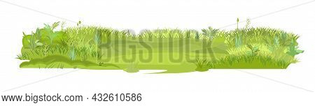 Dense Summer Meadow. Smooth Playground. Herbal Green Thickets. Grass Area. Playground. A Place. Beau
