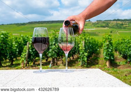 Sommelier Or Waiter Pouring Of Burgundy Red Wine From Grand Cru Pinot Noir Vineyards, Glass Of Wine