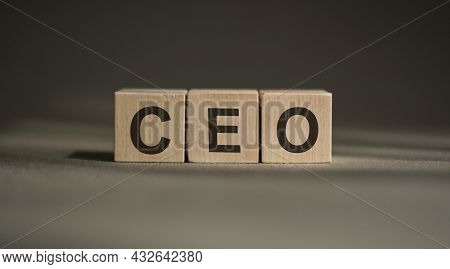 A Wooden Blocks With The Word - Ceo Written On It On A Gray Background.