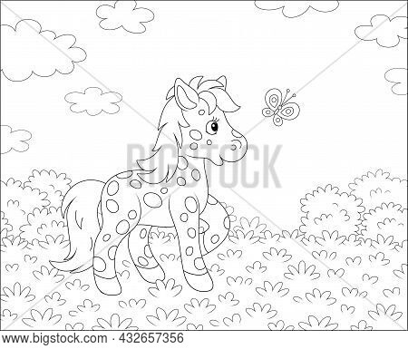 Spotted Cute Little Pony Playing With A Merry Flittering Butterfly On A Pretty Summer Field, Black A