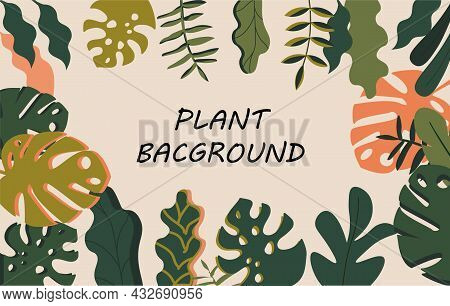 Background With Plants. Beautiful Wallpapers For Computer And Phone. Flora And Fauna, Images For Chi