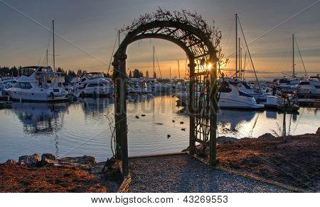 Arbor At Marina Sunset