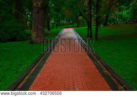 Idyllic Park Outdoor Beautiful Landscaping Scenic View With Wet Paved Trail For Walking And Promenad