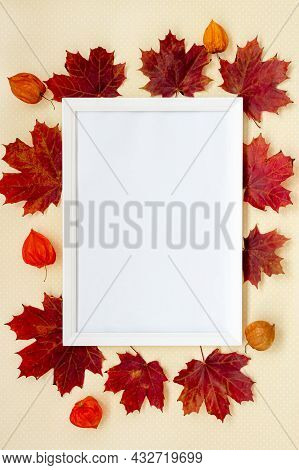 Autumn Composition. Photo Frame, Flowers, Physalis, Leaves On Pastel Background. Autumnal, Fall, Tha