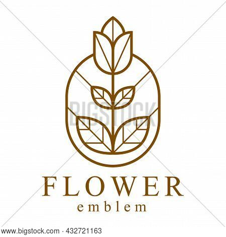 Beautiful Geometric Flower Logo Vector Linear Design Isolated On White, Sacred Geometry Line Drawing
