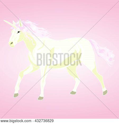 Magic Unicorn Card. Hand Drawing Unicorn. Unicorn Background. Vector Illustration Unicorn.