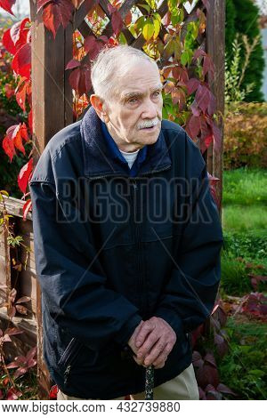 Portrait Of An Old Gray-haired Man In Autumn. Gray-haired 88-year-old Man With A Cane Against The Ba