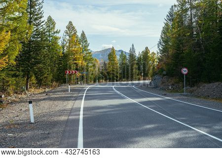 Colorful Autumn Landscape With Larches With Yellow Branches Along Mountain Highway. Coniferous Fores