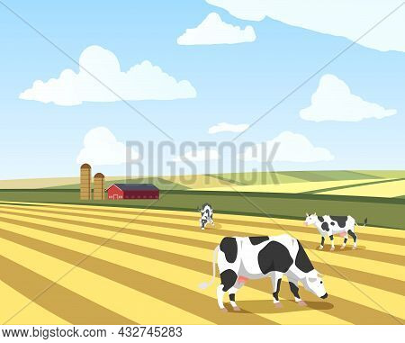 Summer Sunny Landscape With Fields And Grazing Cows, Flat Vector Illustration.