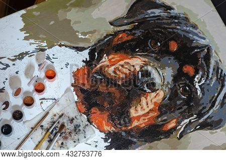 Unfinished Portrait Of Rottweiler And Paint Brushes On Canvas. Painting By Numbers. Set Of Open Plas