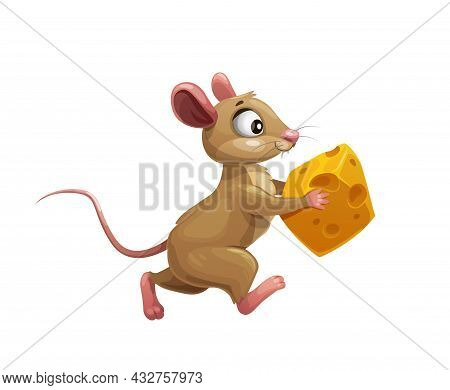 Funny Cartoon Mouse With Cheese Vector Cute Little Rodent Animal Character. Brown Rat Or Mouse Runni
