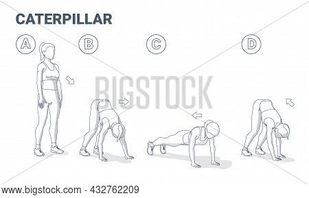 Woman Doing Caterpillar Exercise Fitness Home Workout Guidance Illustration. Training Vector Concept