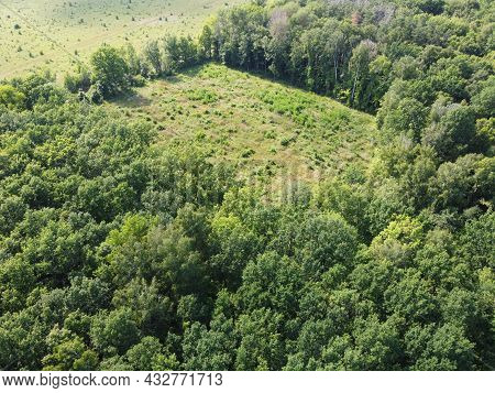 Place Of Felling Of Trees In The Forest, A Clearing. Aerial View Of A Forest Clearing, Landscape. Fe