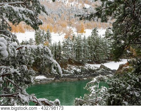 The Turquoise Katun River Against The Background Of The Snow-capped Altai Mountains. View Through Co