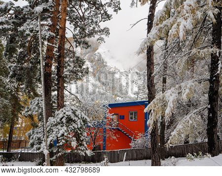 Forest In The Snow. Winter Picture, Tree Branches Are Covered With Snow. Bright Building Against The