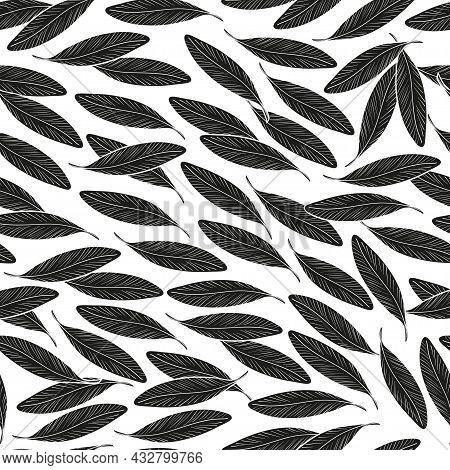 Argan. Sketch. Seamless, Wallpaper. Black Leaves. Silhouette
